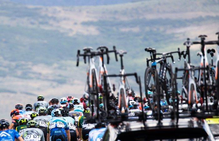 The peloton.