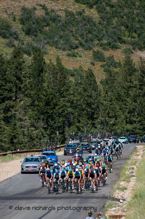 The peloton rides up a steep treelined ramp on the Wolf Creek Ranch climb. Stage 6, 2019 LHM Tour of Utah (Photo by Dave Richards, daverphoto.com)