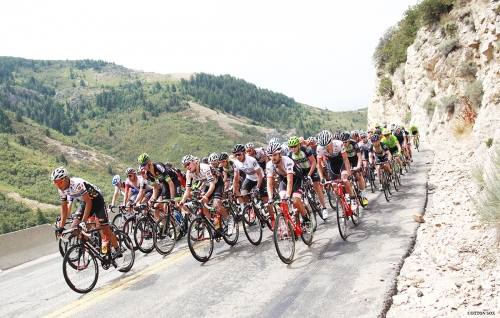 The peloton in North Ogden Canyon during Stage 5 of the 2016 Tour of Utah. Photo by Cathy Fegan-Kim, cottonsoxphotography.com