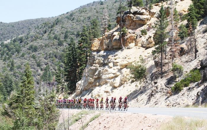 The peloton climbs towards Brian Head. 2018 Tour of Utah Stage 1, August 7, 2018, Cedar City, Utah. Photo by Cathy Fegan-Kim, cottonsoxphotography.net