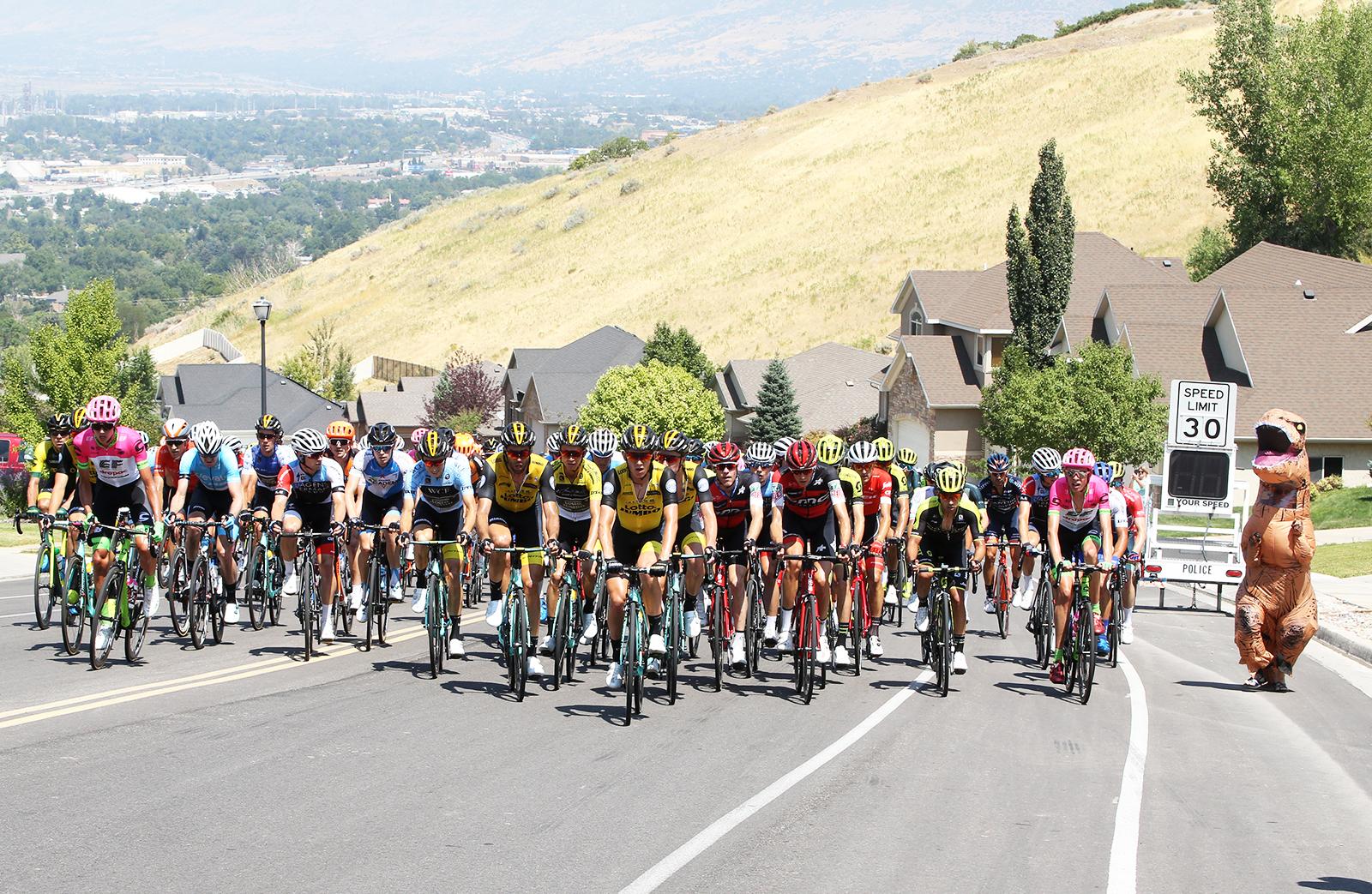 The peloton climbs the neighbourhood of Eagle Ridge Road alongside T-Rex.  2018 Tour of Utah Stage 3, August 8, 2018, Layton, Utah. Photo by Cathy Fegan-Kim, cottonsoxphotography.net