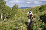 Crest Rider. Photos by Jonathan Cracroft. jonathancracroft.com