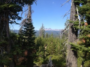 Great views on the marathon course in Bend