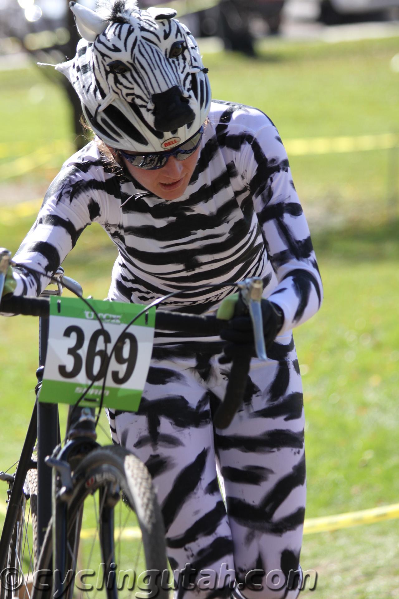 Halloween Zebra Costume