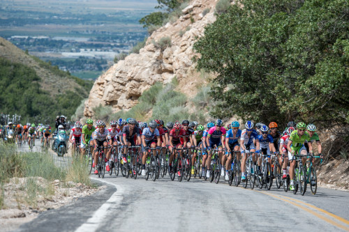 The peloton climbs North Ogden pass for the first of two ascents on stage 4 of the 2014 Tour of Utah. Photo by Dave Richards, daverphoto.com