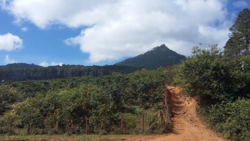 Mountain bike Terrain Vietnam