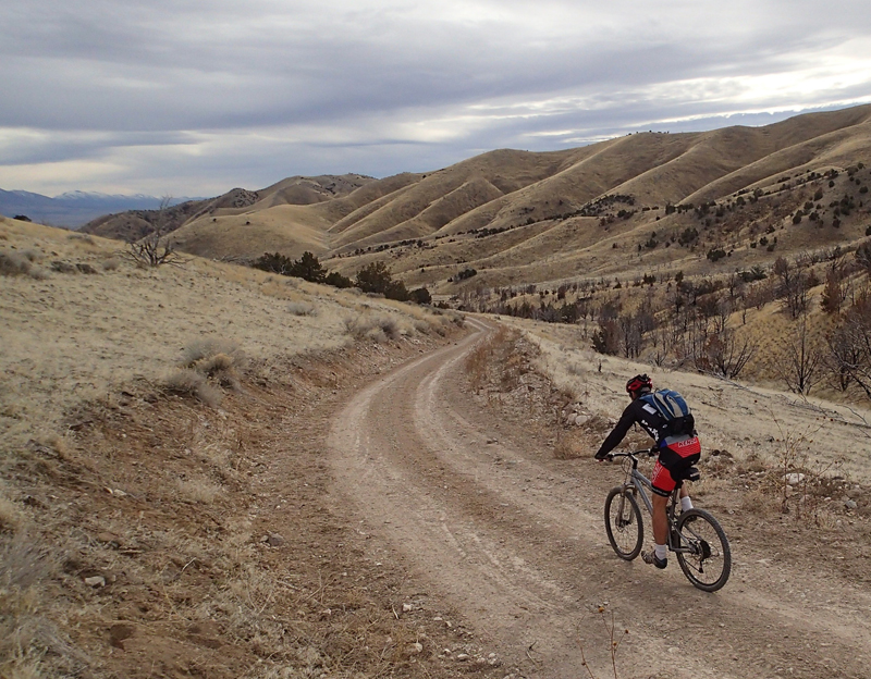 Cedar Mountains Mountain Biking