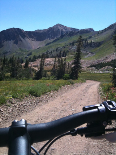 Mountain Biking in Alta in the Wasatch Cache National Forest. Photo by Dave Iltis