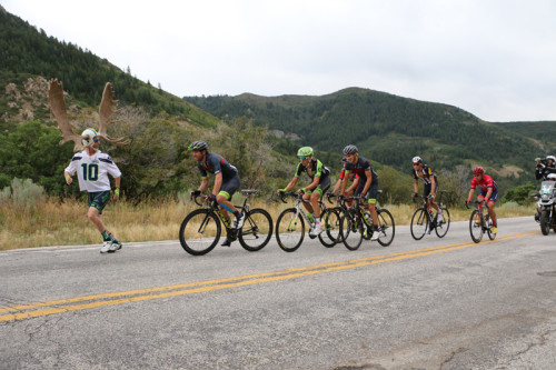 Super Fan Dore Holte and the break on North Ogden Divide in Stage 3 of the 2015 Tour of Utah. Photo by Dave Iltis