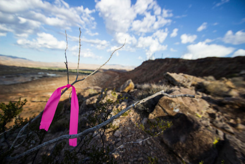 Pink ribbon placed as part of a recent DMBTA project. Photos by Lukas Brinkerhoff