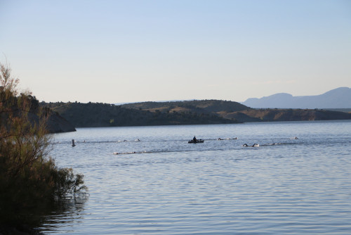 Swimmers on course at Red Fleet Reservoir in the 2016 DinoTri in Vernal, Utah. Photo by Dave Iltis