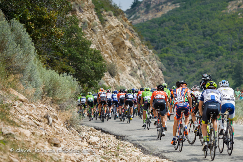The peloton climbs towards the KOM on North Ogden Divide during Stage 5, 2016 Tour of Utah. Photo by Dave Richards, daverphoto.com
