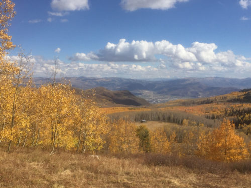 Funds are needed to preserve Bonanza Flat between Big Cottonwood Canyon and Park City. Photo by Charlie Sturgis