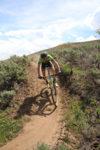 Alex Grant Pro Mountain Biker