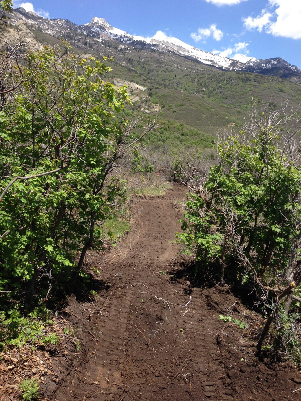 Heading east on the Three Falls Trail during construction. The trail enters a meadow with views of Lone Peak. Photo by Don West