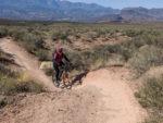 David Ward on the JEM Trail in St. George, Utah. Photo by Karma Ward