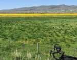 David Collins Utah Border Rides IMG_3760