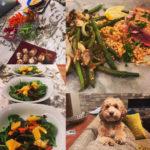Plan 7 Coaching food and dog