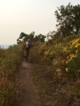 UOLP MTB Trail
