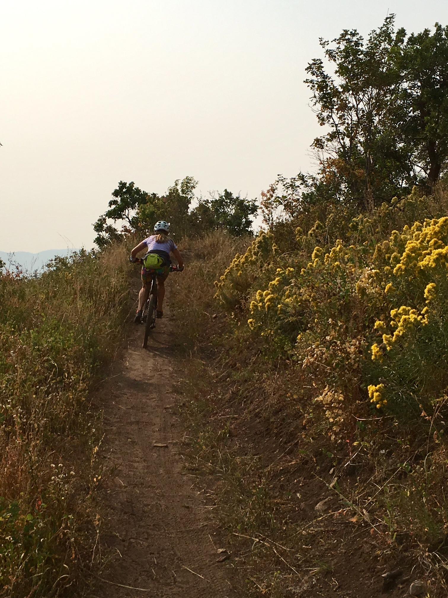 UOLP MTB Trail. Image courtesy UORG