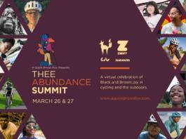 Image courtesy Ayesha McGowan/Thee Abundance Summit